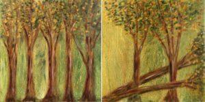Natura 1 e 2 - tecnica mista 50x50cm